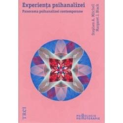 Experienta psihanalizei - Panorama psihanalizei contemporane - Stephen Mitchell