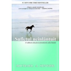 Sufletul neinlantuit - O calatorie dincolo de frontierele eului limitat - Michael A. Singer