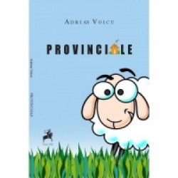 Provinciale - Adrian Voicu