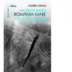 Am zburat pentru Romania Mare. Memoriile unor aviatori care au luptat in anii Primului Razboi Mondial - Valeriu Avram