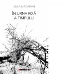 In urna fixa a timpului - Eliza MACADAN