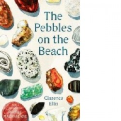 Pebbles on the Beach - Clarence Ellis