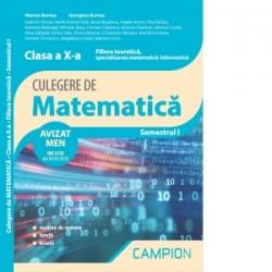Culegere de matematica. Clasa a X-a. Semestrul I. Filiera teoretica, specializarea matematica-informatica - Marius Burtea, Geor