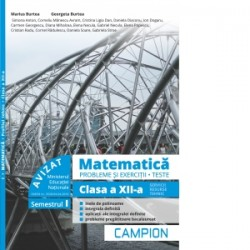 Matematica. Probleme si exercitii. Teste. Clasa a XII-a. Semestrul I. Servicii, resurse, tehnic - Marius Burtea, Georgeta Burte