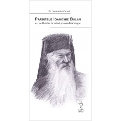 Părintele Ioanichie Bălan - Pr. Constantin Catana