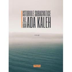 Istoriile subacvatice ale insulei Ada Kaleh: colaje - Daniel Vighi