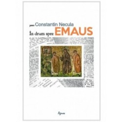 In drum spre Emaus - Pr Constantin Necula