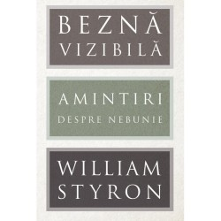 Beznă vizibilă. Amintiri despre nebunie - William Styron