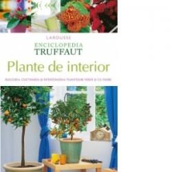 Plante de interior. Alegerea, cultivarea si intretinerea plantelor verzi si cu flori -