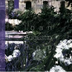 Album de arta - Ioan Augustin Pop
