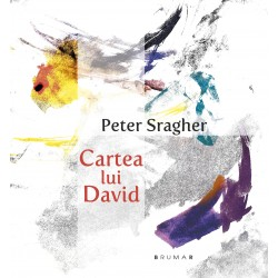 Cartea lui David - Peter Sragher
