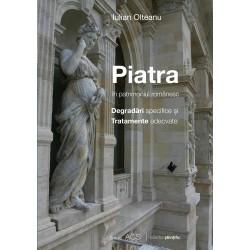 Piatra in patrimoniul românesc Degradări specifice și tratamente adecvate - Iulian Olteanu